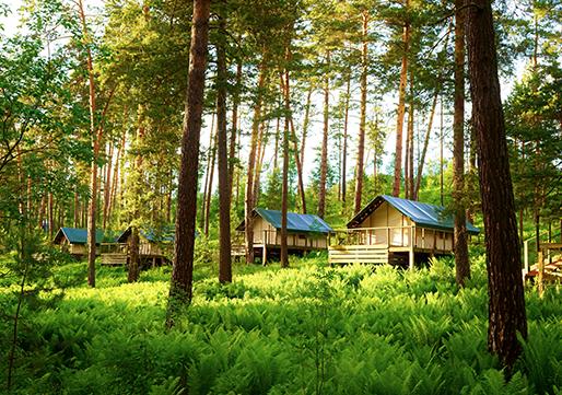 Luxe kamperen - glamping